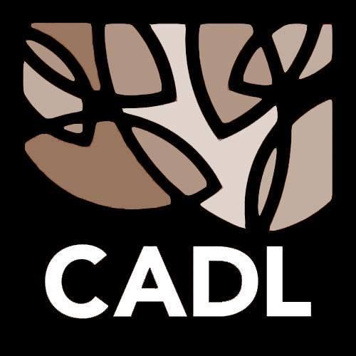 Local History Online Partial Logo.jpg