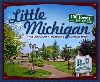 Book cover of Little Michigan